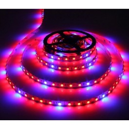 LED STRIP GROW LIGHT ROOD/BLAUW 1M X 12MM 12VDC/14.4W 60LEDSIP65