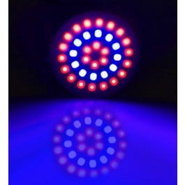 GROW LIGHT GU10 3W 36 LEDS 12 BLAUW EN 24 ROOD